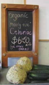 Celeriac at Tuahiwi - it makes great soup